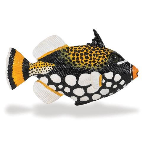 259329-incredible-creatures-clown-triggerfish-1